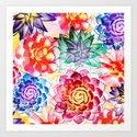 Colorful Succulents  by danaestudio