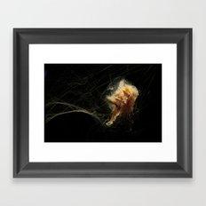 Jellyfish tangle Framed Art Print