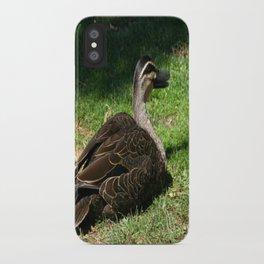 Pacific Black Duck iPhone Case