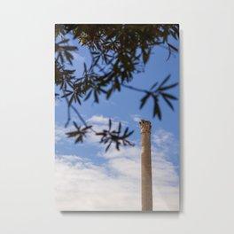 Caecilia Trebulla Metal Print
