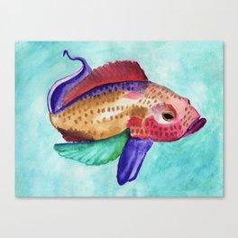 Jewel Fish Canvas Print