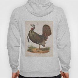 Vintage Wild Turkey Illustration (1872) Hoody