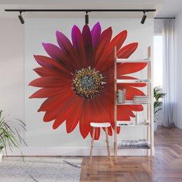 crimson flowers Wall Mural