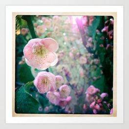 Bloom1 Art Print