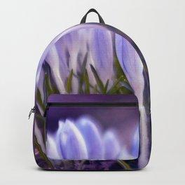 Ultra Violet Sound Backpack