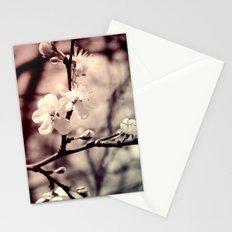Tree Blossom Stationery Cards