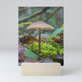 Slender Fungi Mini Art Print