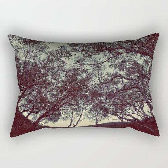 String theory Rectangular Pillow