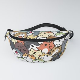 018 Fanny Pack