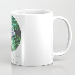 Sorbus aucuparia Coffee Mug
