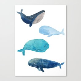 Cool whales Canvas Print