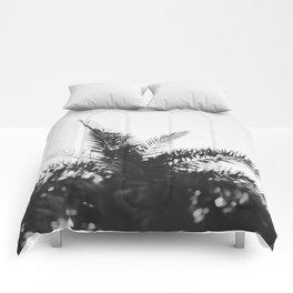 No. 14 Comforters