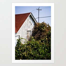 Orange Barn Art Print