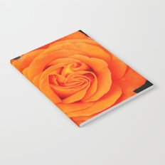 Romantic Rose Orange Notebook