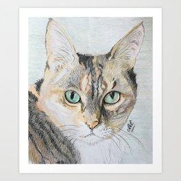 Cookie the cat Art Print