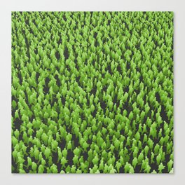 Like Blades of Grass / Large crowd of people illustration Canvas Print