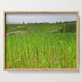 Beautiful spring landscape in Tuscany countryside, Italy. focus on foreground Serving Tray