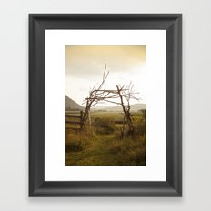Enter Nature Framed Art Print