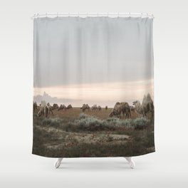 Tribe of Camels in the Kazakh desert Shower Curtain