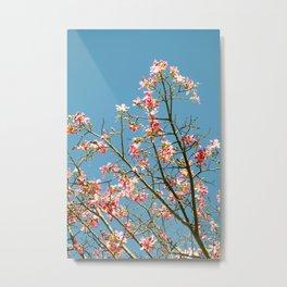 Pink & Turquoise Metal Print