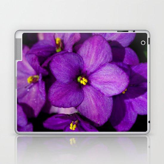 Saintpaulia 8624 Laptop & iPad Skin