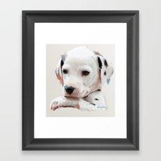 Dalmation Pup Framed Art Print