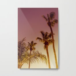 Tall Palm Trees and Pink Sky, Palm Springs, California Metal Print