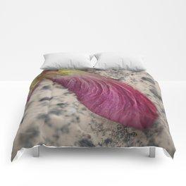 Maple Seed Comforters