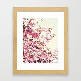 Cherry blossoms world Framed Art Print