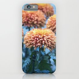 Longwood Gardens Autumn Series 221 iPhone Case