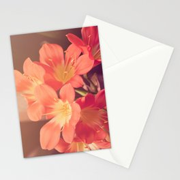 Pastel Pink Flowers Stationery Cards