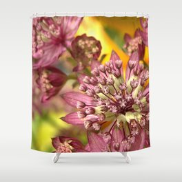 Purple Burst of Flowers 103 Shower Curtain