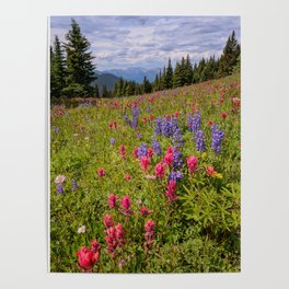 SHRINE RIDGE COLORADO SUMMER PHOTO -  MOUNTAIN IMAGE - WILDFLOWERS PICTURE - LANDSCAPE PHOTOGRAPHY Poster