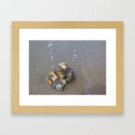 Sea pearls Framed Art Print