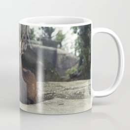 Deer on Rock Coffee Mug