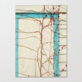 Chicago Vine Canvas Print