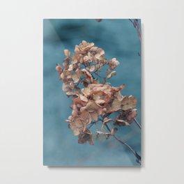 Dried Beauty Metal Print