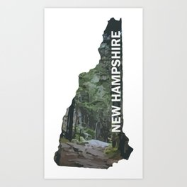 State of New Hampshire - Forest Trail Art Print