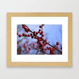 Red Winterberries Framed Art Print
