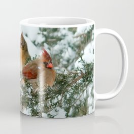 After the Snow Storm: Three Cardinals Coffee Mug