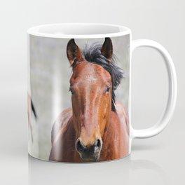 Extremely Photogenic Horse Coffee Mug