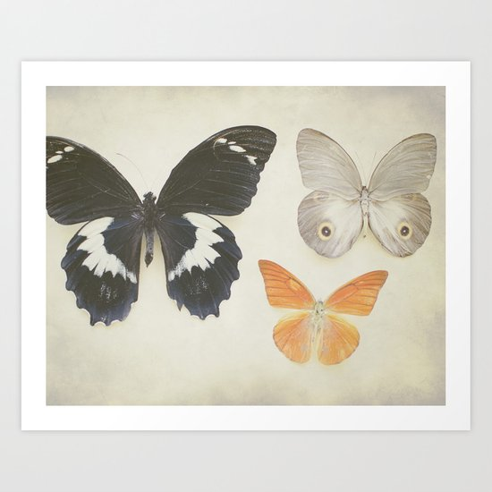 Brown Butterflies  Art Print