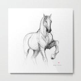 Horse (Siwy / Silver) Metal Print