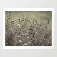Weeds in the pasture Art Print