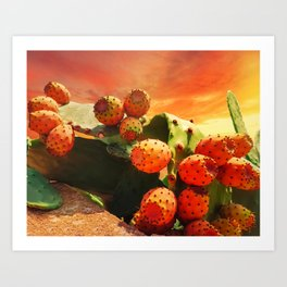 Prickly Pear Cactus Fruits And Red Sky Art Print