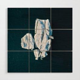 Lone, minimalist Iceberg from above - Landscape Photography Wood Wall Art