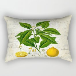 Lemon Botanical print on antique almanac collage Rectangular Pillow