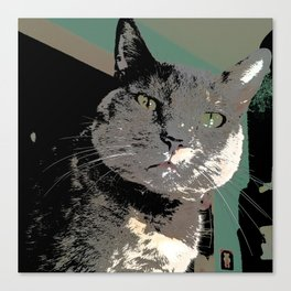 Diluted Drama showing her colors Canvas Print