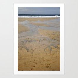 Water Way Art Print