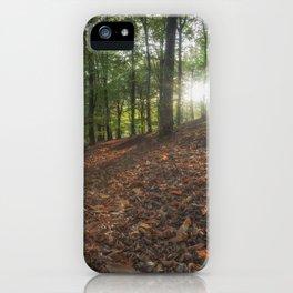 Autumn Sunbeams iPhone Case